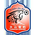 新疆天山雪豹